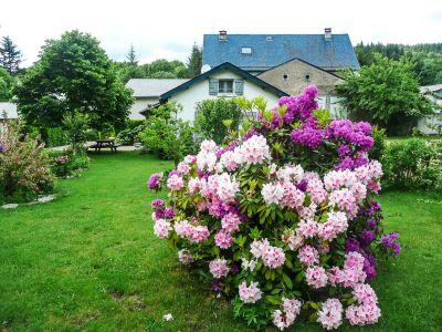 Jardin5reduc